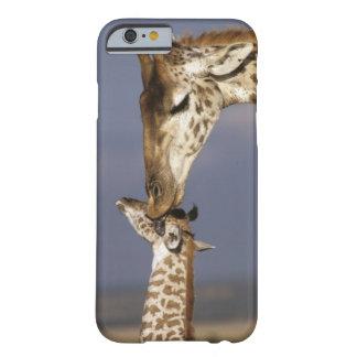África Kenia Masai Mara Jirafas jirafa