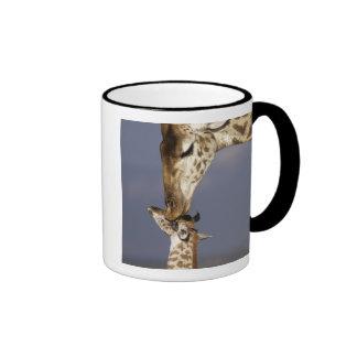 África Kenia Masai Mara Jirafas jirafa Taza De Café