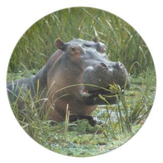 África, Kenia, Masai Mara NR. Un hipopótamo de la  Plato Para Fiesta