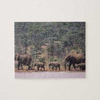 África, Kenia, Nanyuki, Mpala. Africano Puzzles Con Fotos