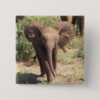 Africa, Kenya, Amboseli National Park. African 2 Pinback Button