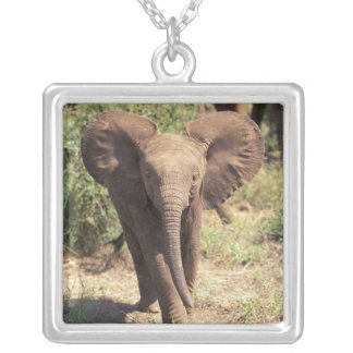 Africa, Kenya, Amboseli National Park. African 2 Silver Plated Necklace