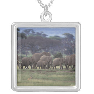 Africa, Kenya, Amboseli National Park. African 3 Silver Plated Necklace