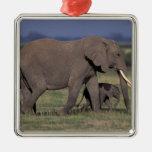 Africa, Kenya, Amboseli National Park. African 4 Christmas Ornament