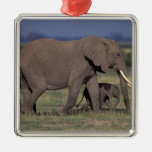 Africa, Kenya, Amboseli National Park. African 4 Square Metal Christmas Ornament