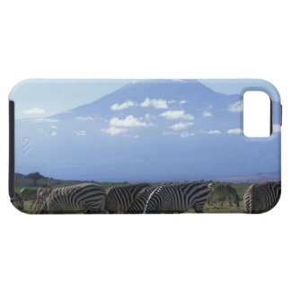 Africa, Kenya, Amboseli National Park, Herd of iPhone SE/5/5s Case