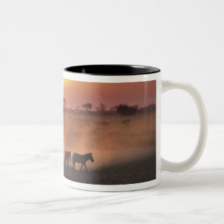 Africa, Kenya, Amboseli NP. Zebra walk to the Two-Tone Coffee Mug