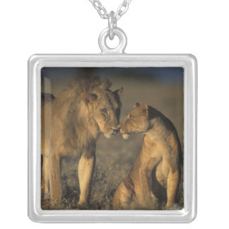 Africa, Kenya, Buffalo Springs National Reserve, Silver Plated Necklace