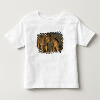 Africa, Kenya, Buffalo Springs National Reserve, Toddler T-shirt