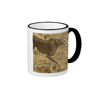 Africa. Kenya. Cheetah at Samburu NP. Ringer Coffee Mug