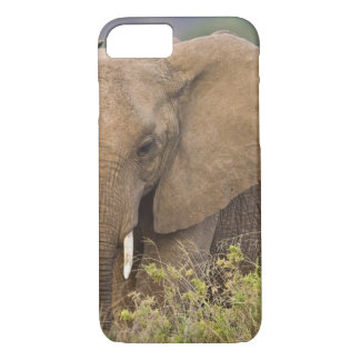 Africa. Kenya. Elephant at Samburu NP. iPhone 8/7 Case