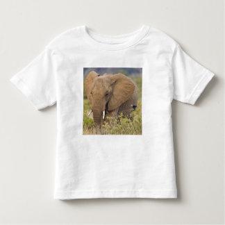 Africa. Kenya. Elephant at Samburu NP. Toddler T-shirt