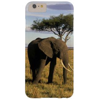 Africa, Kenya, Maasai Mara. An elehpant in the Barely There iPhone 6 Plus Case