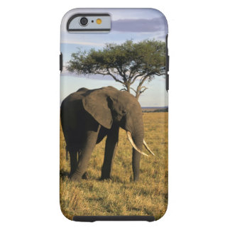 Africa, Kenya, Maasai Mara. An elehpant in the Tough iPhone 6 Case