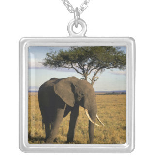 Africa, Kenya, Maasai Mara. An elehpant in the Silver Plated Necklace