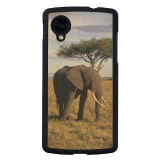 Africa, Kenya, Maasai Mara. An elehpant in the Carved® Maple Nexus 5 Slim Case