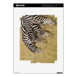 Africa, Kenya, Maasai Mara Decals For iPad 3