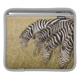 Africa, Kenya, Maasai Mara iPad Sleeve