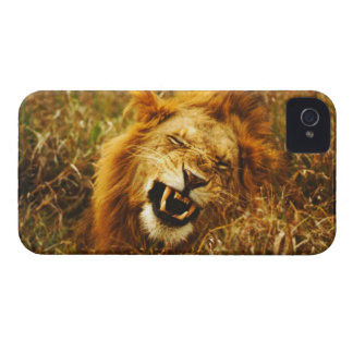 Africa, Kenya, Maasai Mara. Male lion. Wild iPhone 4 Case-Mate Case