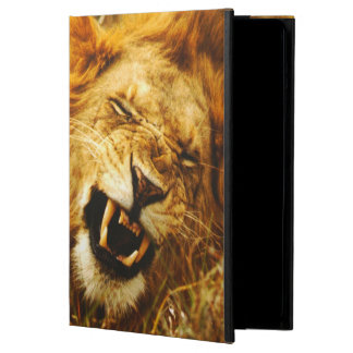Africa, Kenya, Maasai Mara. Male lion. Wild iPad Air Cases