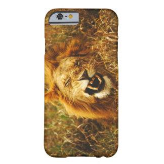 Africa, Kenya, Maasai Mara. Male lion. Wild iPhone 6 Case
