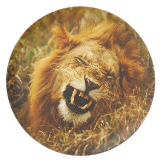 Africa, Kenya, Maasai Mara. Male lion. Wild Melamine Plate