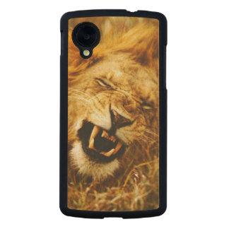 Africa, Kenya, Maasai Mara. Male lion. Wild Carved® Maple Nexus 5 Case