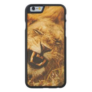 Africa, Kenya, Maasai Mara. Male lion. Wild Carved® Maple iPhone 6 Case