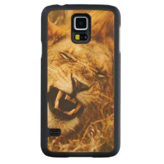 Africa, Kenya, Maasai Mara. Male lion. Wild Carved® Maple Galaxy S5 Slim Case