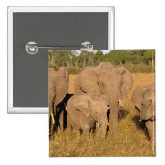 Africa, Kenya, Masai Mara. African Elephant Button