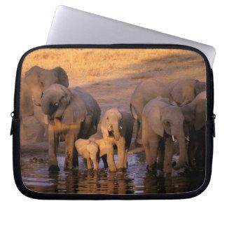 Africa, Kenya, Masai Mara. Elephants (Loxodonta Laptop Computer Sleeves