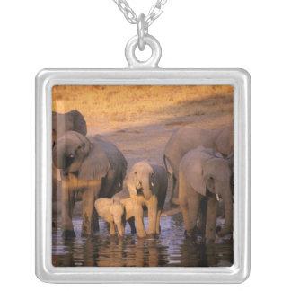 Africa, Kenya, Masai Mara. Elephants (Loxodonta Personalized Necklace