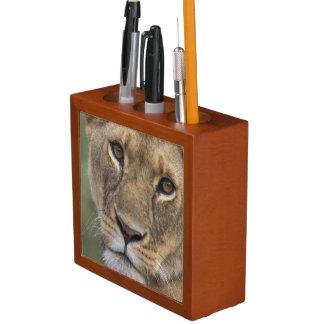 Africa, Kenya, Masai Mara Game Reserve, 2 Desk Organizer