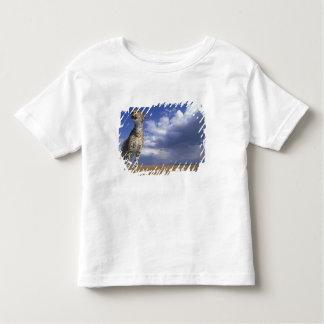 Africa, Kenya, Masai Mara Game Reserve, Adult 2 Toddler T-shirt