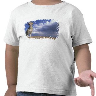 Africa, Kenya, Masai Mara Game Reserve, Adult 2 Tee Shirt