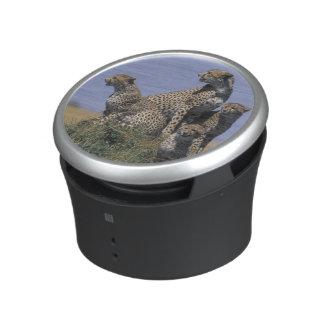 Africa, Kenya, Masai Mara Game Reserve, Adult 4 Bluetooth Speaker