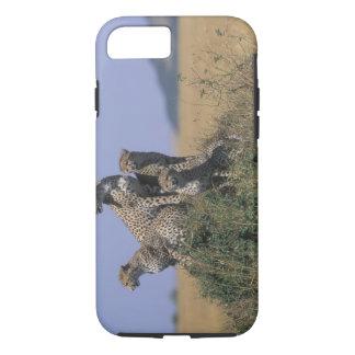 Africa, Kenya, Masai Mara Game Reserve, Adult 4 iPhone 8/7 Case