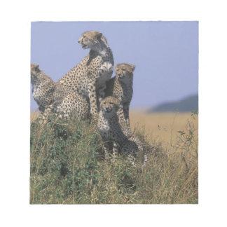 Africa, Kenya, Masai Mara Game Reserve, Adult 4 Notepad