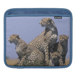 Africa, Kenya, Masai Mara Game Reserve, Adult 4 Sleeve For iPads