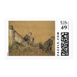 Africa Kenya Masai Mara Game Reserve Adult 5 Stamp