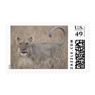 Africa Kenya Masai Mara Game Reserve Adult 6 Stamps