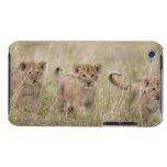 'Africa, Kenya, Masai Mara Game Reserve' Case-Mate iPod Touch Case
