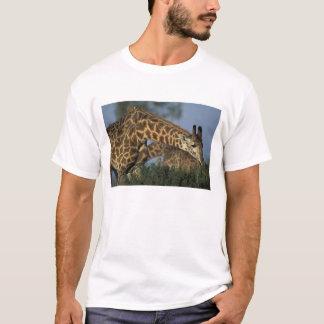 Africa, Kenya, Masai Mara Game Reserve, Giraffes T-Shirt