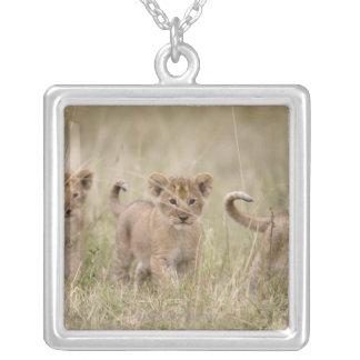 'Africa, Kenya, Masai Mara Game Reserve' Custom Jewelry