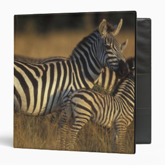 Africa, Kenya, Masai Mara Game Reserve. Plains Binder