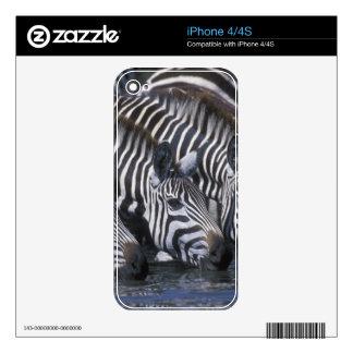 Africa, Kenya, Masai Mara Game Reserve, Plains Skin For The iPhone 4S