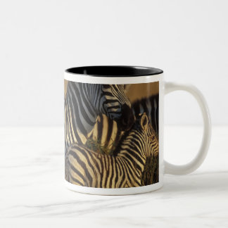Africa, Kenya, Masai Mara Game Reserve. Plains Two-Tone Coffee Mug