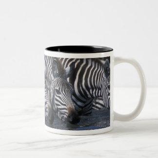 Africa, Kenya, Masai Mara Game Reserve, Plains Two-Tone Coffee Mug