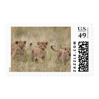 Africa Kenya Masai Mara Game Reserve Stamps