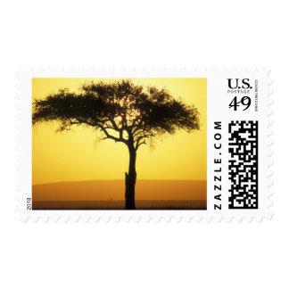 Africa Kenya Masai Mara Game Reserve Rising Stamp